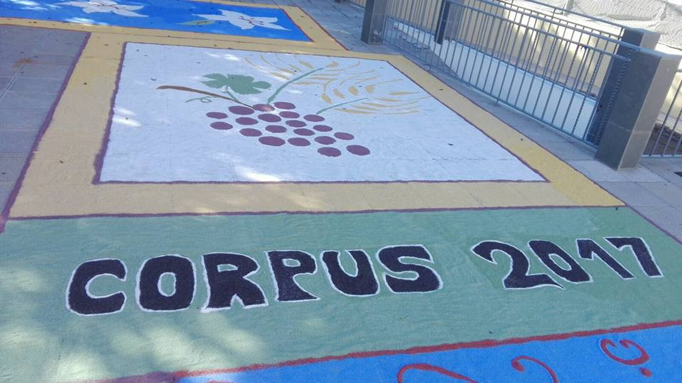 Corpus 2017 11